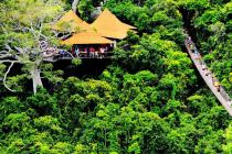4A热带天堂森林公园